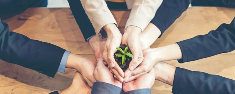 Le Notariat : une profession verte, sensible à l'écologie et à l'environnement - Notaire Ville-d'Avray 92410 - Office Notarial Maître Delphine MARIE-SUTTER