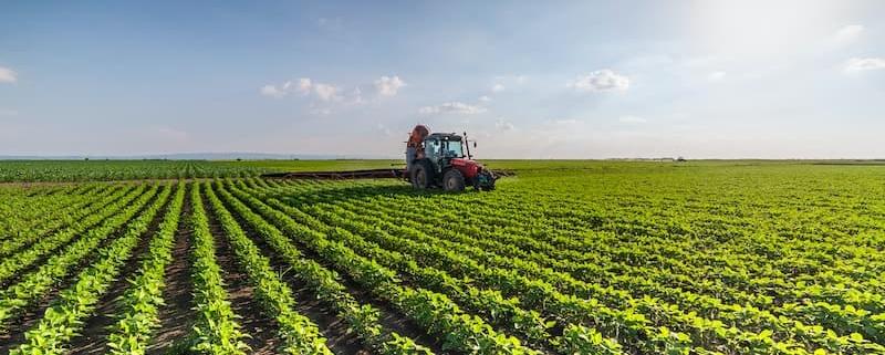 Monde agricole : sociétés spécifiques et bail rural - Notaire Ville-d'Avray 92410 - Office Notarial Maître Delphine MARIE-SUTTER